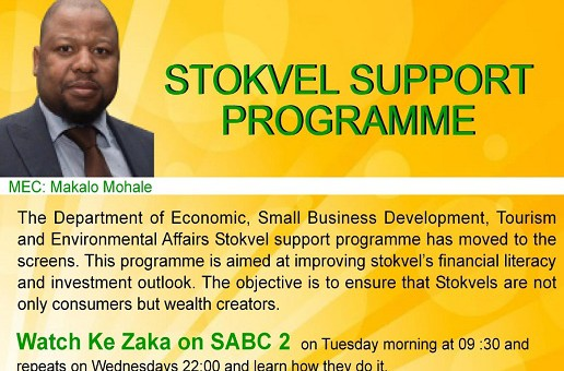 Stokvel Support Programme